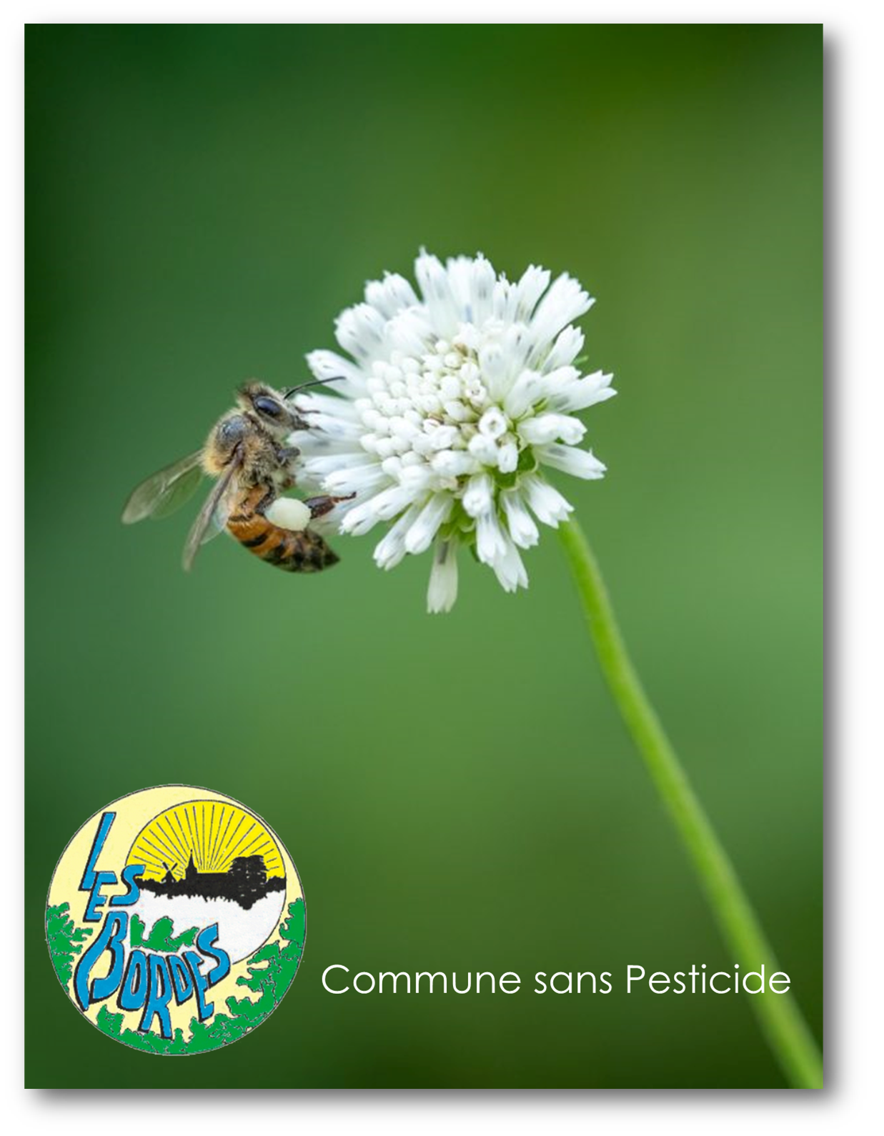 Les Bordes Commune sans Pesticide