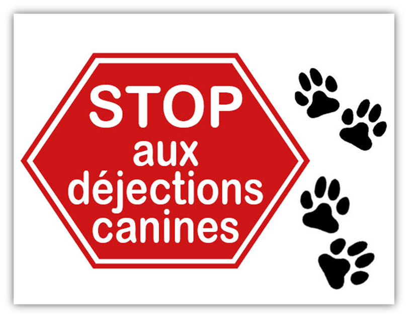 dejection_canines